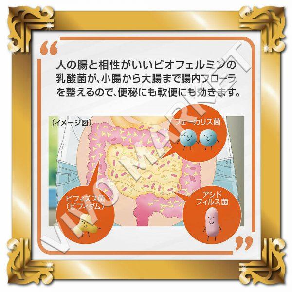 Japan Supplement New BIOFERMIN S Lactic Acid Bacterium 540 Tablets FS 2