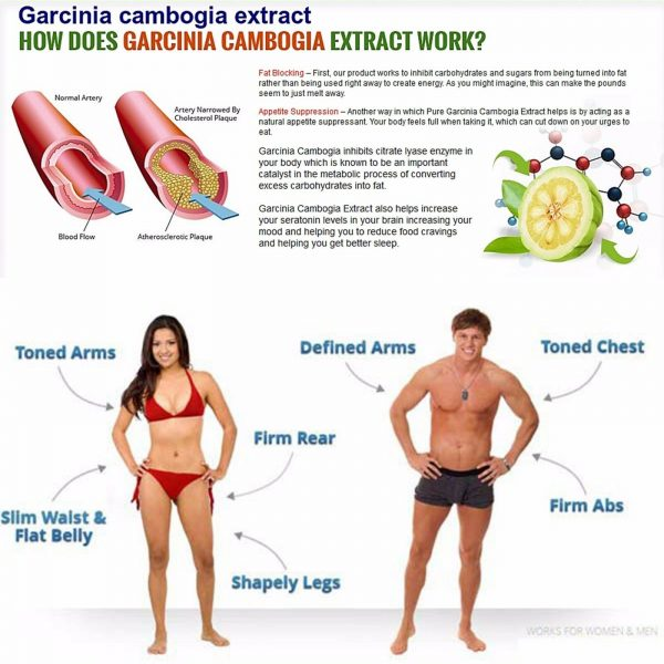 4 Pack PURE Garcinia Cambogia Extract Natural Weight Loss HCA Diet FAT BURN 2