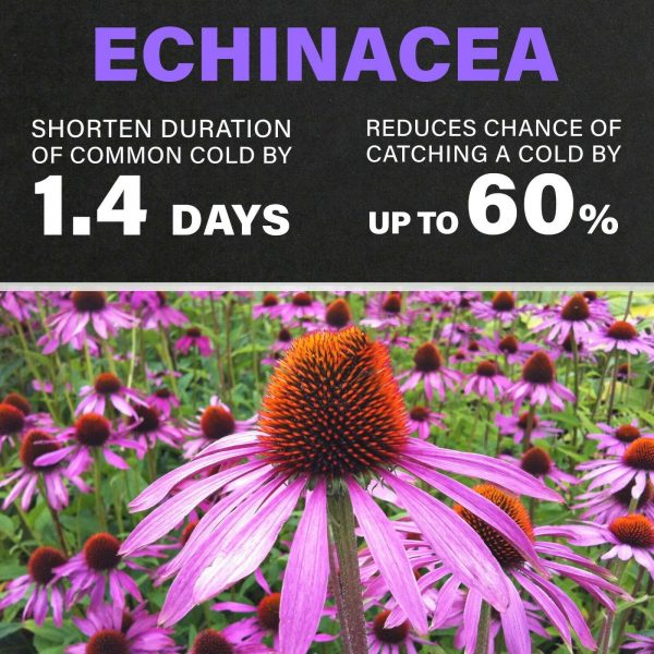 VITAMIN C**ZINC**ELDERBERRY**ECHINACEA**10 in 1 IMMUNE System BOOSTER & SUPPORT 4