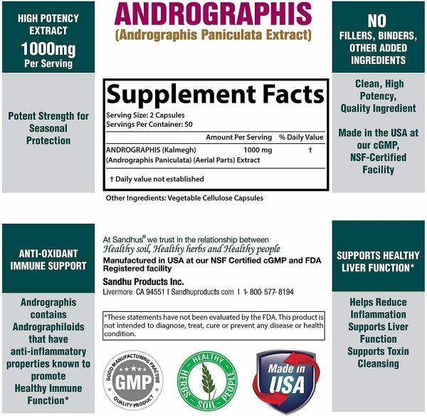 Andrographis Vegetarian 100 Capsules | Immune support |Superior Quality |Kalmeg  3