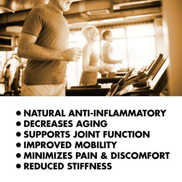 Turmeric Curcumin 2000 mg High Absorption Extra Strength Vegan Capsules 240 Ct 2