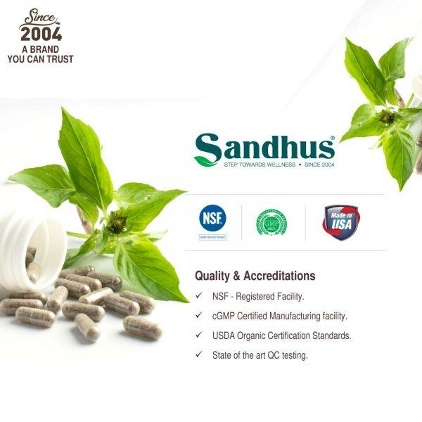Andrographis Vegetarian 100 Capsules | Immune support |Superior Quality |Kalmeg  6