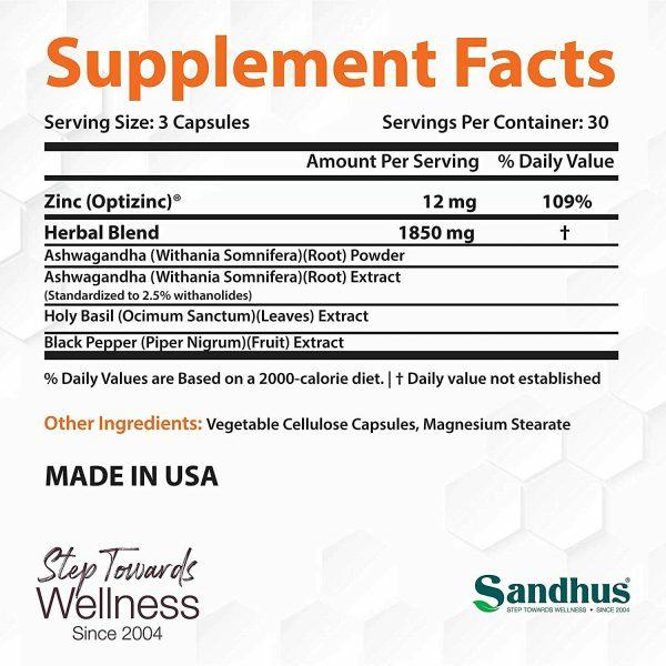 Andrographis Vegetarian 100 Capsules | Immune support |Superior Quality |Kalmeg  1