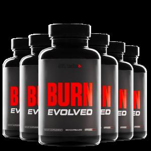 SCULPTnation BURN EVOLVED - 6 BOTTLE