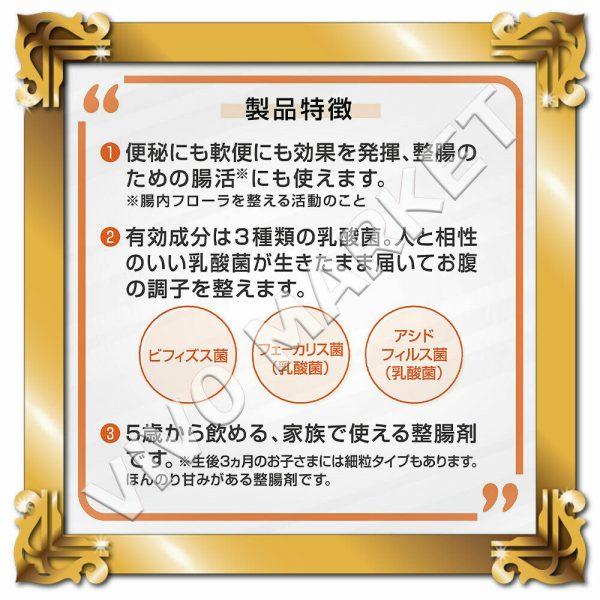 Japan Supplement New BIOFERMIN S Lactic Acid Bacterium 540 Tablets FS 5