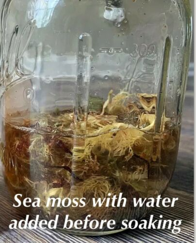 WILDCRAFTED Raw Purple Sea Moss Organic 2-20oz Real deal from Jamaica - READ!!! 3