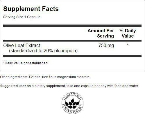 Swanson Extra Strength Olive Leaf Extract Capsules, 750 mg, 60 Count 1