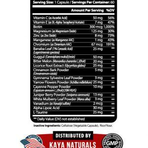 (2 Pack) BLOOD SUGAR SUPPORT Alpha Lipoic Acid & Cinnamon 20 Herbs 60 Capsules 1