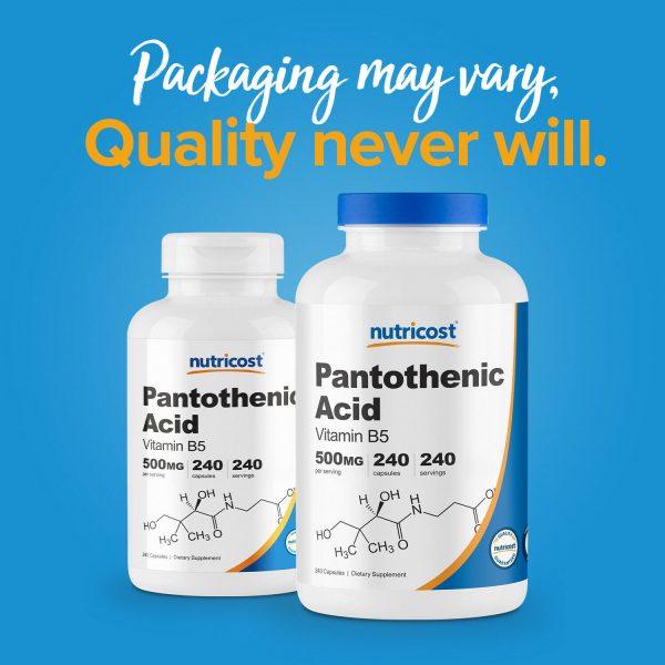 Nutricost Pantothenic Acid (Vitamin B5) 500mg, 240 Capsules - High Quality 2