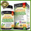 BioSchwartz Prebiotic Supplement For Gut Health For Gas Relief, Bloating, IBS