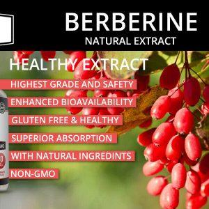 Premium Berberine HCL Extract 60 Pills, Healthy Cholesterol, Anti-inflammatory 1