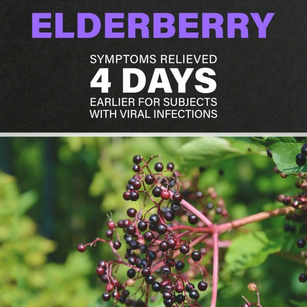 VITAMIN C**ZINC**ELDERBERRY**ECHINACEA**10 in 1 IMMUNE System BOOSTER & SUPPORT 3