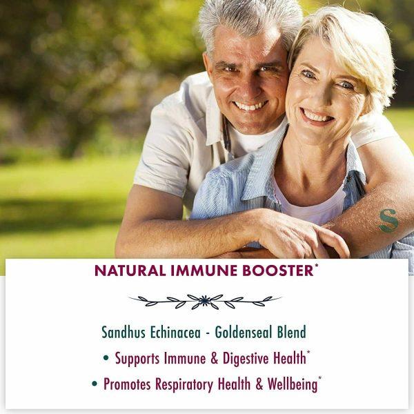 Echinacea Goldenseal Vegetarian Capsules 180 Ct- Immune Booster 1000 mg 3