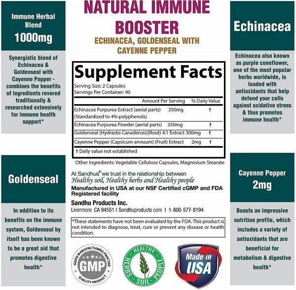 Echinacea Goldenseal Vegetarian Capsules 180 Ct- Immune Booster 1000 mg 2