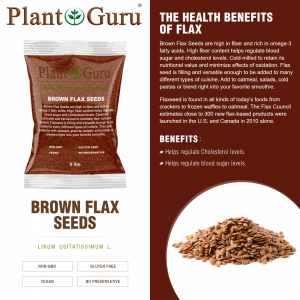 Brown Flax Seeds Whole Grain Seed Flaxseed NON GMO Linseed  1 oz to 20 lbs. Bulk 1