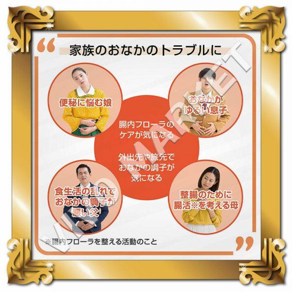 Japan Supplement New BIOFERMIN S Lactic Acid Bacterium 540 Tablets FS 3