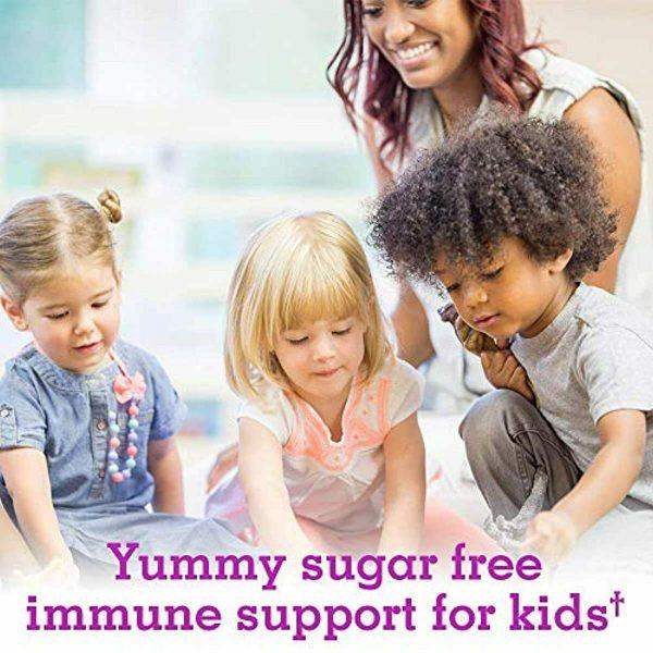Garden of Life Kids Organic Elderberry Immune Syrup with Vitamin c for Immune Su 2