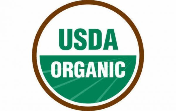 100% Organic Ancient Sea Bed Grown Wheat Grass Juice Powder, 90 Servings 3