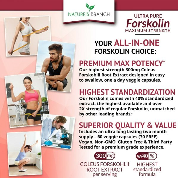 PREMIUM 100% ULTRA PURE FORSKOLIN EXTRACT FOR WEIGHT LOSS MAXIMUM STRENGTH! 1