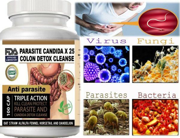 Remove Parasite ANTI PARASITE & CANDIDA DETOX Body Cleanse ULTRA FLASH COLON 100 7