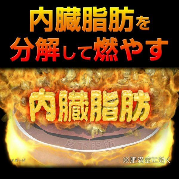 KOBAYASHI NAISHITORU Burning Slimming Herbal Za 420 tablets  From Japan 3