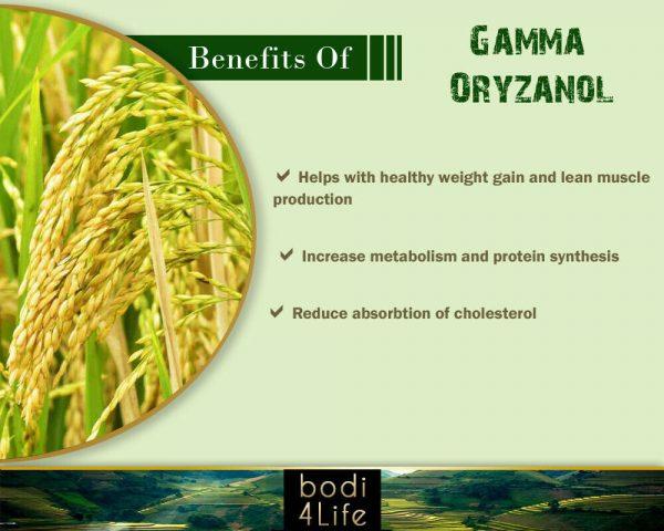 Gamma Oryzanol Powder - 100% Pure Natural Chemical Free (2oz > 10 lb) 3