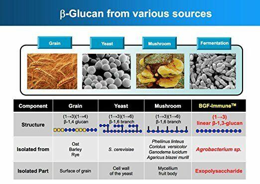 Glucan Elite - 1,3D Beta Glucan 85% - 2 bottles 4