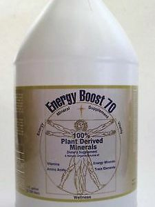 Morningstar Minerals Energy Boost 70 Fulvic Acid Natural Supplement Gallon Size