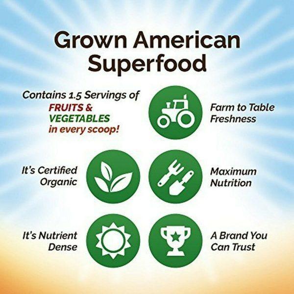 Grown American Superfood: 31 Organic Whole Fruits & Veggies in Every Scoop! (2) 2