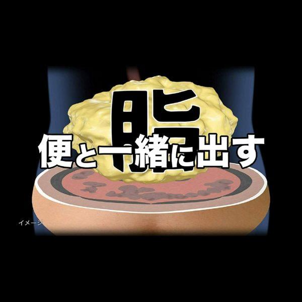 KOBAYASHI NAISHITORU Burning Slimming Herbal Za 420 tablets  From Japan 4