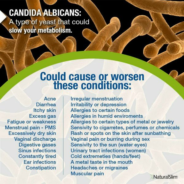 NaturalSlim CANDIDA Albicans Treatment Kit for Full Detox and Cleanse of Fungus 2