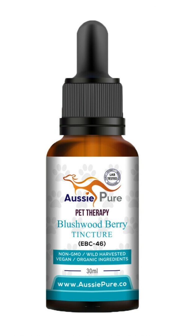 Aussie Pure Pet Therapy Blushwood Berry 30ML - Tumor Treatment - Dogs and Cats