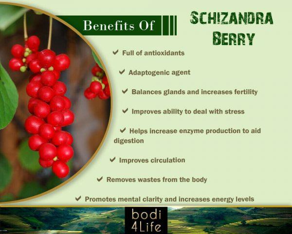 Schizandra Berry Powder - 100% Pure Natural Chemical Free (4oz > 2 lb) 3