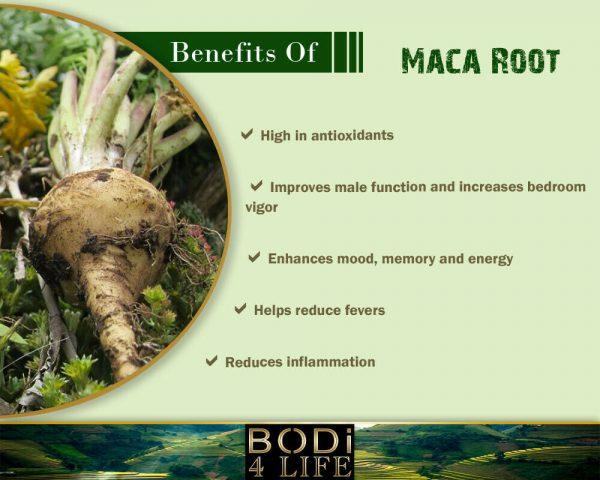 Maca Root Powder - 100% Pure Natural Chemical Free (4oz > 10 lb) 3