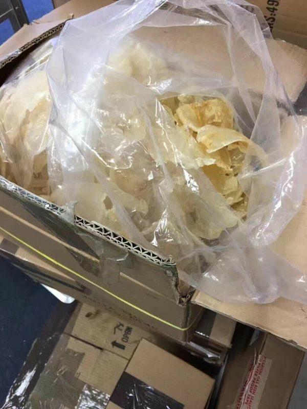Natural Dried Fish Maw半磅装/1磅装/超靓南美洲天然野生蝴蝶胶,黃花鱼胶(纽约总经销) 2