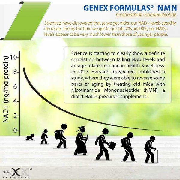 NMN Stabilized Form 500mg Serving Nicotinamide Mononucleotide Direct NAD... 5