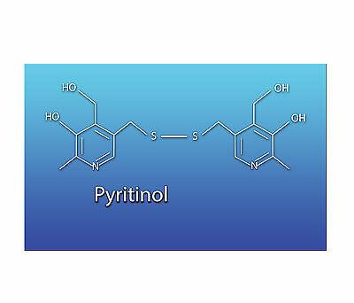 Pyritinol 100g. Bulk Powder