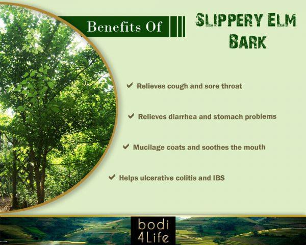 Slippery Elm Inner Bark Powder - 100% Pure Natural Chemical Free (4oz > 5 lb) 3