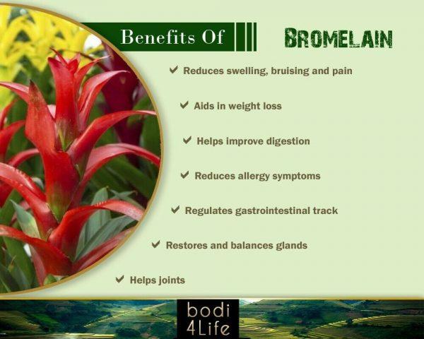 Bromelain Powder 2400gdu Extract - 100% Pure Natural Chemical Free (2oz > 32oz) 3