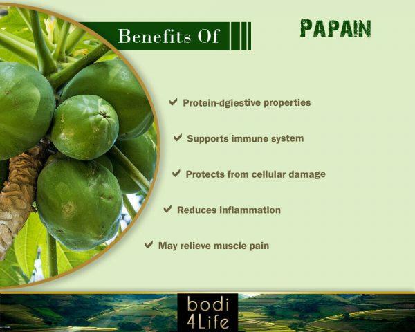 Papain Powder 100u/mg Proteinase - 100% Pure Natural Chemical Free (4oz > 5 lb) 3
