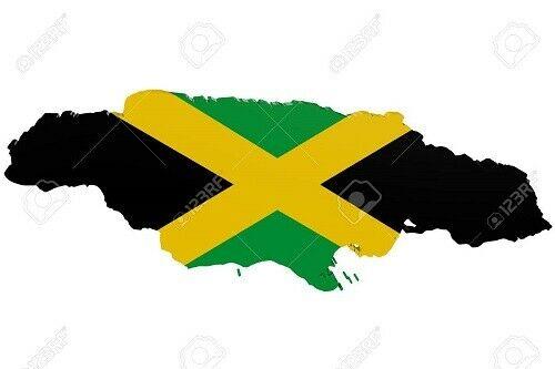 Jamaican Irish Sea Moss, Dr.Sebi Formula/ Raw and Wild Crafted 2