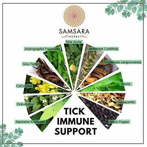 Tick Immune Support - (240 Capsules)  2