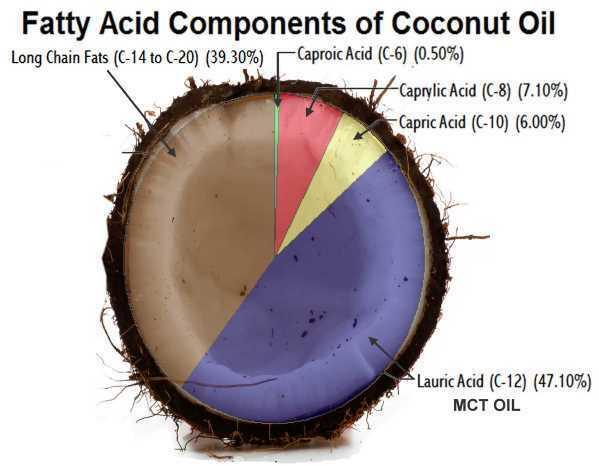 MCT Oil Powder (Vegan Coconuts Extract, NON-GMO) - Purity Lab Grade (4oz > 32oz) 4