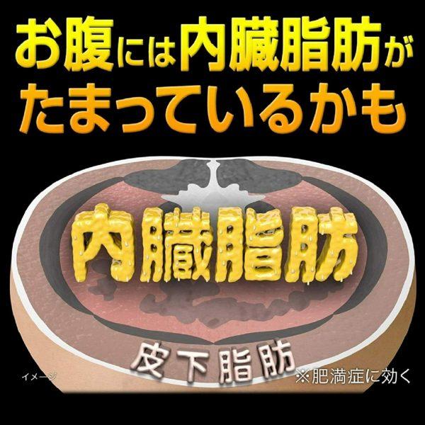KOBAYASHI NAISHITORU Burning Slimming Herbal Za 420 tablets  From Japan 2