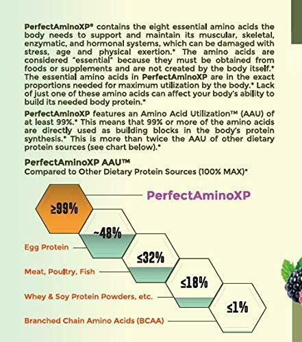 Perfect Amino XP - Mixed Berry (60 Servings) 1