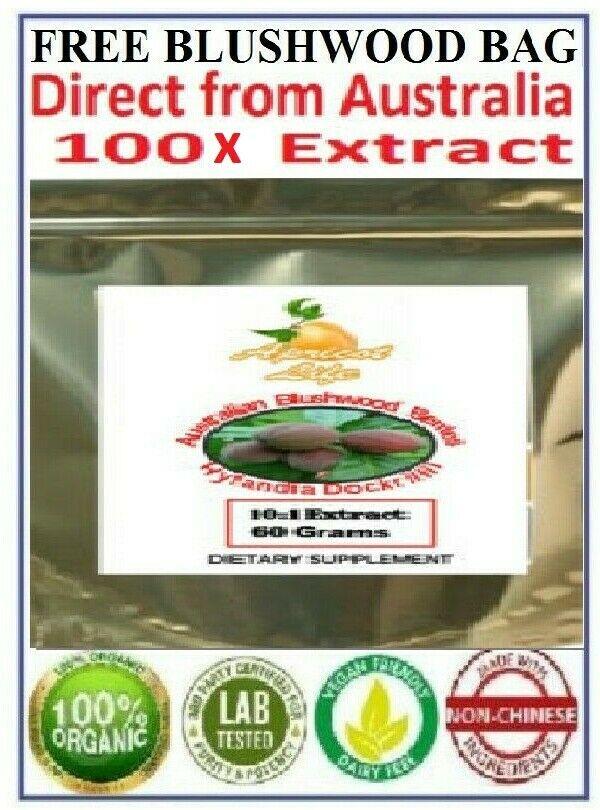 Hylandia Dockrillii Blushwood Berries Seed PURE ORGANIC 100x Extract EBC46
