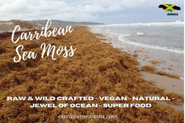 Jamaican Irish Sea Moss, Dr.Sebi Formula/ Raw and Wild Crafted