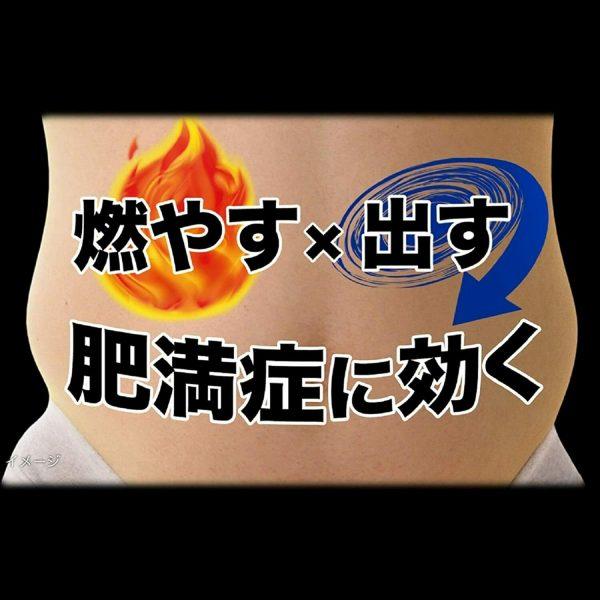 KOBAYASHI NAISHITORU Burning Slimming Herbal Za 420 tablets  From Japan 5