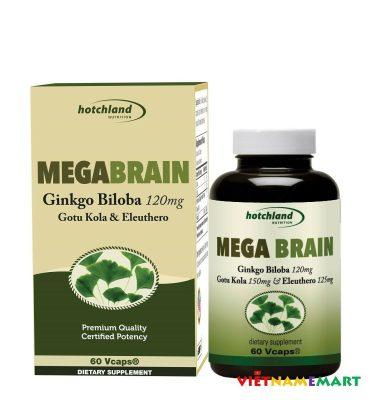 MegaBrain Ginkgo Biloba 120mg supports Cognitive Function, Brain healthy